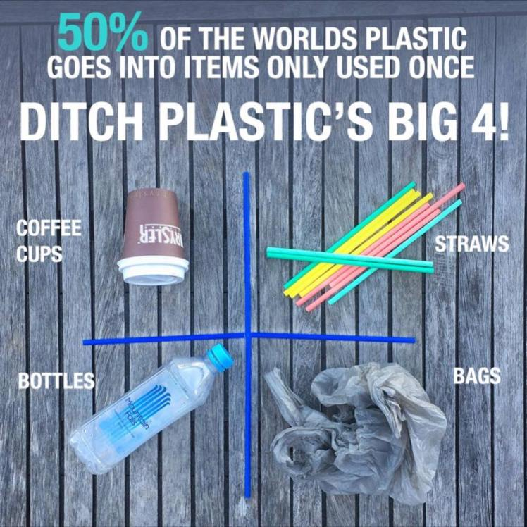 ditch plastic